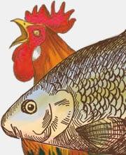 Рисунки для этикеток «Сванские специи»