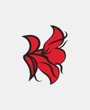 Логотип мюзикла «Дон Жуан. Нерассказанная история»