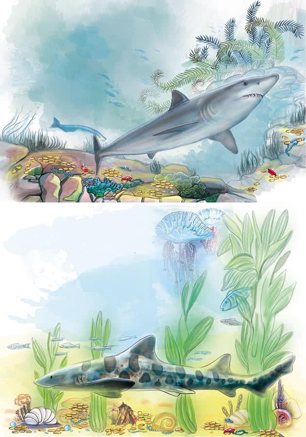Серия иллюстраций «На дне моря» для календаря «Sales Leads» в разделе «Иллюстрации» портфолио дизайн-студии «Aedus Design»