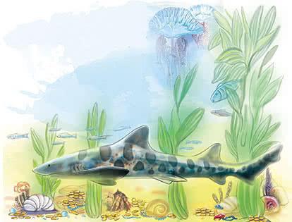 Серия иллюстраций «На дне моря» для календаря «Sales Leads»