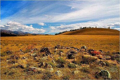 фотографии горный алтай степь