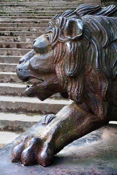 фотографии бронзовых львов